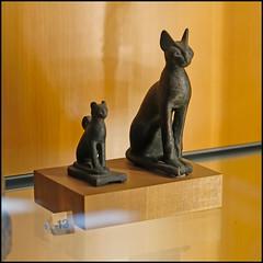 (wilphid) Tags: lyon rhône rhônealpes musée beauxarts art antiquité statues architecture muséedesbeauxarts palaisstpierre sculpture