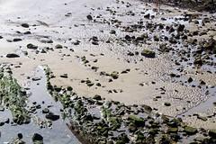 Las piedras de la playa de EREAGA en ALGORTA durante la bajamar (eitb.eus) Tags: eitbcom 31191 g154449 tiemponaturaleza tiempon2019 playa bizkaia getxo aitorvillacampa