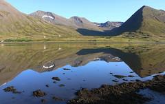 Siglufjörður (hó) Tags: siglufjörður hólsfjall landscape iceland norðurland fjord still reflection móskógahnjúkur fýlaskálahnjúkar pallahnjúkur mountains coast sea august 2019 summer shadow