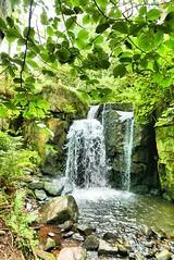 Lumsdale Falls (pixelnic-uk) Tags: lumsdalefalls waterfalls peakdistrict matlock water nature green trees leaves greenleaf outdoors lumsdalewaterfall lumsdalevalley derbyshire england uk travel uktravel englandtravel scenery beautifulscenery prettynature rocks
