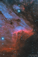 IC5067 - Bicolor (Alejandro Pertuz) Tags: nebula pelican space cosmos astronomy astrophotography hubble bicolor oxygen longexposure nightphotography deepsky astrometrydotnet:id=nova3606497 astrometrydotnet:status=solved