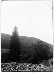 Agfa Ysolette Medium Format 11 (John Teulon Ladd) Tags: formapanclassic100isobw wwwmeinfilmlabde mittelformat analog 120film agfaysolette bw film mediumformat monochrome moyenformat schwarzweiss ysolette agfa meinfilmlab