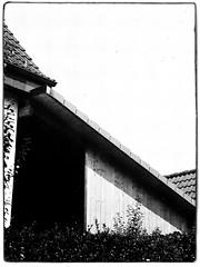 Agfa Ysolette Medium Format 10 (John Teulon Ladd) Tags: formapanclassic100isobw wwwmeinfilmlabde mittelformat analog 120film agfaysolette bw film mediumformat monochrome moyenformat schwarzweiss ysolette agfa meinfilmlab