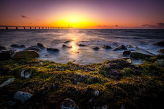 Seaweed in stormy water (dannygreyton) Tags: ocean bridge sunset sea rocks sweden malmö seagrass storm windy colorful fujifilmxt2 fujinon1024mm fujifilmxseries öresund öresundsbron europe