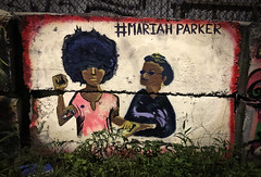 Mariah Parker Art in Bushwick (Alexander H.M. Cascone [insta @cascones]) Tags: select nyc newyorkcity newyork ny brooklyn bushwick art paint painted graffiti streetart street wall city new york blm politics politician mariahparker support reform rights woman afro hashtag mariah parker malcolmx