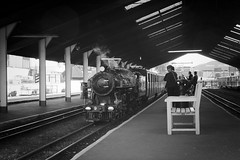 Winston Churchill at New Romney B+W (theRealDieselDave) Tags: rhdr romney churchill loco steam train railway