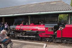 Churchill At Romney (theRealDieselDave) Tags: rhdr romney churchill loco steam train railway