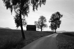 Country road  (HP5+) (Harald Philipp) Tags: aegeri aegerital zug switzerland mountain alps trees farm barn road blackandwhite rollei35 35se 135 35mm hp5 adonal rodinal150 jobo bsprocessor