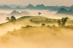 _J5K9052.0110.Tân Lập.Mộc Châu.Sơn La (hoanglongphoto) Tags: asia asian vietnam northvietnam northernvietnam northwestvietnam landscape scenery vietnamlandscape vietnamscenery mocchaulandscape morning nature sunny sunnymorning morningsunshine mist earlymorningfog hill ridge ridgehill sky mountain mountains vietnamnature canon canoneos1dsmarkiii canonef70200mmf28lisusm tâybắc sơnla mộcchâu tânlập thiênnhiên phongcảnh phongcảnhmộcchâu buổisáng buổisángmộcchâu sươngmù sươngsớm nắng nắngsớm nắngsớmmộcchâu nhữngngọnđồi núi dãynúi bầutrời happyplanet asiafavorites minimalisme minimalistlandscape