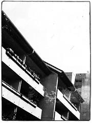 Agfa Ysolette Medium Format 9 (John Teulon Ladd) Tags: formapanclassic100isobw wwwmeinfilmlabde mittelformat analog 120film agfaysolette bw film mediumformat monochrome moyenformat schwarzweiss ysolette agfa meinfilmlab