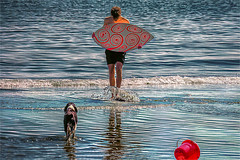 Tribute to Summer ) (Natalia Medd) Tags: ocean boy sea dog seaside oceanside red summer reflection water day pattern blu board summertime puddleboard basket pail playing beach childhood fun child