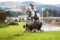 Splish Splash (Ed Swift) Tags: 70200mmf28lisii 7d2 blairatholl blaircastleinternationalhorsetrials canon crosscountry equestrian horse jump scotland sport water xc