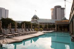 Swimming pool (thewanderingeater) Tags: windsorcourthotel neworleans luxuryboutiquehotel centralbusinessdistrict louisiana luxuryhotel