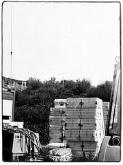 Agfa Ysolette Medium Format 7 (John Teulon Ladd) Tags: formapanclassic100isobw wwwmeinfilmlabde mittelformat analog 120film agfaysolette bw film mediumformat monochrome moyenformat schwarzweiss ysolette agfa meinfilmlab