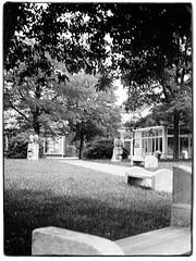 Agfa Ysolette Medium Format 2 (John Teulon Ladd) Tags: formapanclassic100isobw wwwmeinfilmlabde mittelformat analog 120film agfaysolette bw film mediumformat monochrome moyenformat schwarzweiss ysolette agfa meinfilmlab