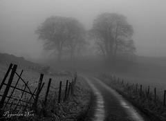 Owl Hole (pygarian_nox) Tags: buxton owl hole high edge lead mines derbyshire dowel dale fog mist winter