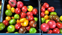 Not All Tomatoes Are Red. (ManOfYorkshire) Tags: tomato tomatoes fruit salad item food dukeries worksop nottinghamshire £650 perkilo unusual rare red green yellow heritage