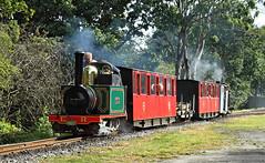 Top N' Tailed Katies. (Neil Harvey 156) Tags: steam steamloco steamengine steamrailway railway katie claytonwest kirkleeslightrailway estatesrailwaysgala miniaturerailway eatonhallrailway sirarthurheywood