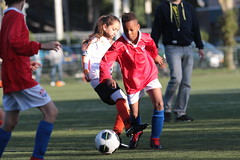 """HBC Voetbal • <a style=""""font-size:0.8em;"""" href=""""http://www.flickr.com/photos/151401055@N04/48732900468/"""" target=""""_blank"""">View on Flickr</a>"""