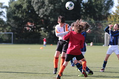 """HBC Voetbal • <a style=""""font-size:0.8em;"""" href=""""http://www.flickr.com/photos/151401055@N04/48732917953/"""" target=""""_blank"""">View on Flickr</a>"""
