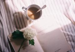 light within (betulvargun) Tags: expiredfilm kodak canon coffee thatsdarling ifyouleave light filmphotography