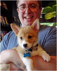 Corgi, Max & Person, Justin | Vinings Community | At the Read Shop (steveartist) Tags: corgis dogs puppies maxthecorgi men guys fellows baristas justin smiles coffeeshop thereadshop sonydschx80 snapseed photostevefrenkel