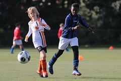 """HBC Voetbal • <a style=""""font-size:0.8em;"""" href=""""http://www.flickr.com/photos/151401055@N04/48733249406/"""" target=""""_blank"""">View on Flickr</a>"""