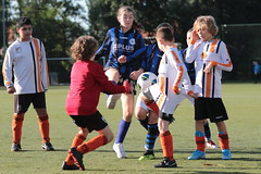 """HBC Voetbal • <a style=""""font-size:0.8em;"""" href=""""http://www.flickr.com/photos/151401055@N04/48733252011/"""" target=""""_blank"""">View on Flickr</a>"""
