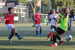 """HBC Voetbal • <a style=""""font-size:0.8em;"""" href=""""http://www.flickr.com/photos/151401055@N04/48733413087/"""" target=""""_blank"""">View on Flickr</a>"""