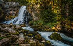 Magical waterfall (gregor158) Tags: gollinger waterfall wasserfall austria österreich trees water moss golling salzburg rocks green forest leaves europe river stream