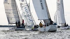 Västerås sailing week 2019