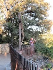 Alejandro and crucifix at panorama, Beynac-et-Cazenac, France (Paul McClure DC) Tags: beynacetcazenac périgord dordogne france nouvelleaquitaine sept2019 historic people sculpture tripticus