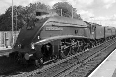 60009 - Union of South Africa (Signal Box - Railway photography) Tags: outdoor monochrome railway railroad uk mainline steam engine locomotive basingstoke station hampshire 60009 unionofsouthafrica a4 pacificclass lner steamengine dorsetcoastexpress