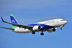 (ORY) Tassili Airlines Boeing 737-800  7T-VCE Landing runway 06 (dadie92) Tags: orly ory lfpo boeing b737 b737800 7tvce alger aigleazur landing spotting aircraft airplane nikon d7100 sigma tamron danieldanel