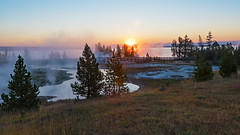 Sunrise at West Thumb (ValeTer_) Tags: natural landscape sky nature atmospheric phenomenon sunrise morning tree environment wilderness cloud nikon d7500 national park usa wy wyoming yellowstone nps nikond7500 nationalpark yellowstonenationalpark