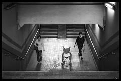 UNTITLED-NOIR 30 (ajpscs) Tags: ©ajpscs ajpscs 2019 japan nippon 日本 東京 tokyo people ニコン nikon d750 tokyostreetphotography streetphotography strangers urban urbanlife walksoflife tokyoscene anotherday tokyonoir streetoftokyo monokuro blackwhite bw noir blackandwhite untitlednoir