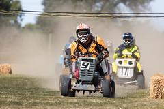 Lawnmower Racing - BLMRA at The Great Maze 2019 (mattbeee) Tags: 9 braintree blmra britishlawnmowerracingassociation essex grass grassrootsmotorsport greatmaze lawn lawnmower motorsport racing