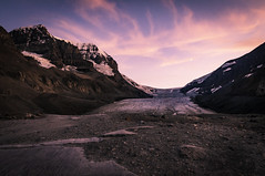 The Toe of the Athabasca Glacier (Dad from Hell) Tags: 2019 athabasca canada canadarocks dadfromhell flowersplants gary garypaakkonen paakkonen photography summer toeoftheathabascaglacier d300s glacier landscape mountains nature nikon rocks sunset mountathabasca alberta