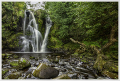 fairies live here (richgparkes) Tags: yourkshire dales bolton abbey