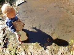 Eliza and her shadow (quinn.anya) Tags: eliza toddler shadow stream strawberrycreek