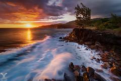 The Wild South (DanielKHC) Tags: reunion island iledelareunion tisable saintjoseph waves long exposure filters nd64 nd1000 cpl gnd gitisl blending nikon d850 nikkor1424mm sunset clouds golden light