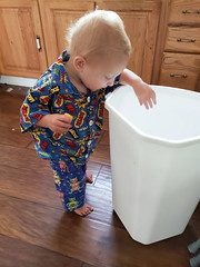 Cleaning up (quinn.anya) Tags: eliza toddler trash cleaning