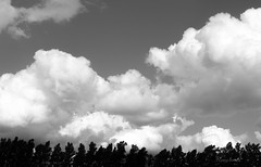 (dreinabeth) Tags: photography lovephoto blackandwhite nikon nubes cielo sky clouds dreams life