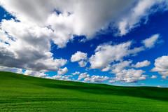Palouse Hills (jeff's pixels) Tags: palouse washinton pnw pacificnorthwest landscape nature sky clouds bus train car plain bird