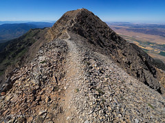 Nebo North Summit (xjblue) Tags: 2019 mtnebo utah highpoint hike mountain mountains nature outdoor wasatch summit wasatchmountains summer