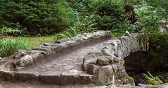 Le pont de pierre (mrieffly) Tags: canoneos50d pontàlancienne vosges vologne