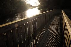 Walkway (HighDensityPotato) Tags: walkway bridge denmark lake sunset lines shadows golden