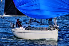 Under a blue sail on blue water. (Ian Ramsay Photographics) Tags: sydney newsouthwales australia yacht bluesail bluewater knots wind sydneyharbour playground