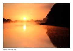 Loire et beauté (Bruno-photos2013) Tags: maineetloire loireatlantique france paysageligérien paysdeloire paysage brume leverdujour contrejour ombres silhouette bretagne anjou reflets reflection river landscape