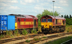 Didcot Locos. (curly42) Tags: 60087 class60 tug ews 66120 class66 shed railway didcotparkway